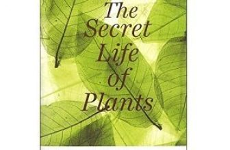 The Secret Life of Plants Paperback by Peter Tompkins